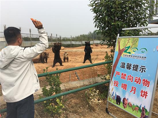 """洛阳万安山动物园双节前推出""""奇葩""""规定"""